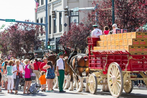 Top Causes of Injuries at the Rose Parade (Watch Out for These Dangers!)